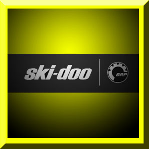 Skidoo Snow Shocks